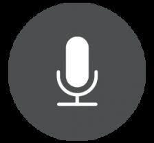 recording-icon